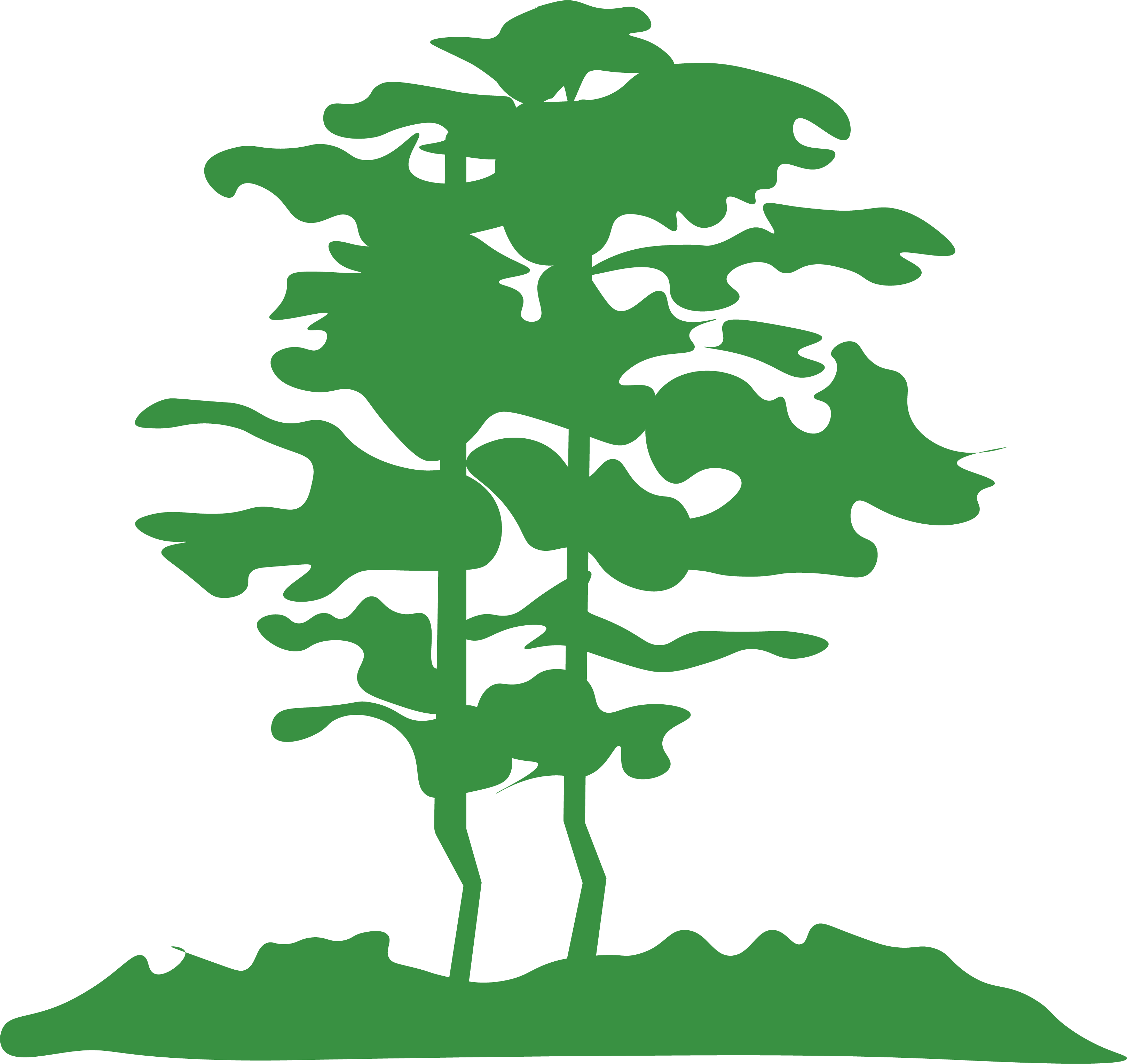 Kohlmaier Arbor Care